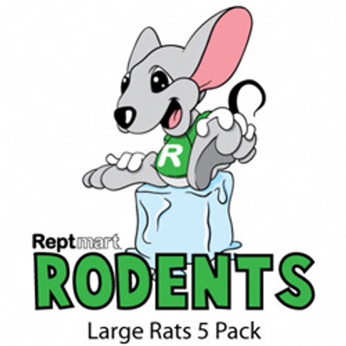 Large Rat 5 Pack (200-274g)