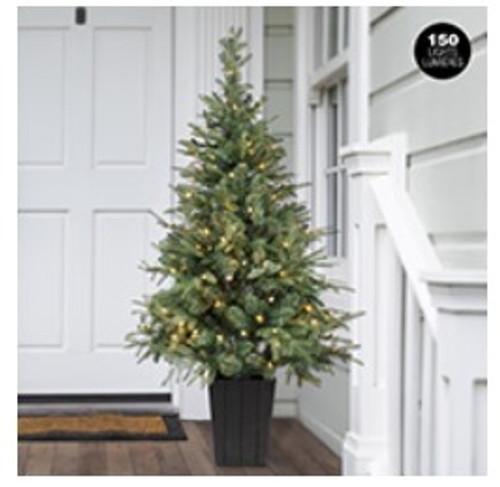 60 inch prelit porch tree