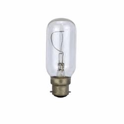 B22 Light Bulb