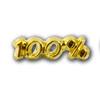 100 percent Lapel Pin