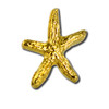 Starfish 4 Lapel Pin