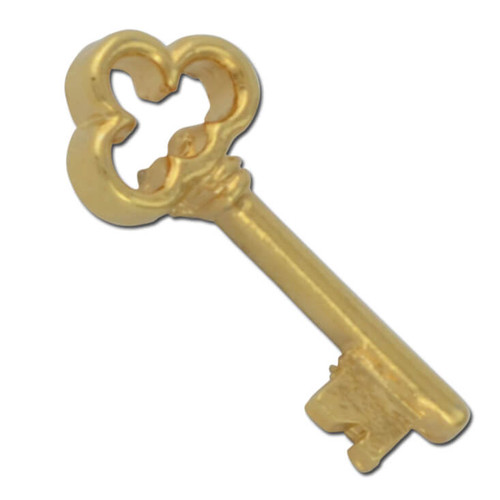 D02 Clover Head Skeleton Key Lapel Pin