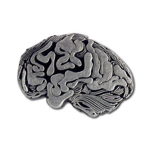 A37 - Brain Lapel Pin