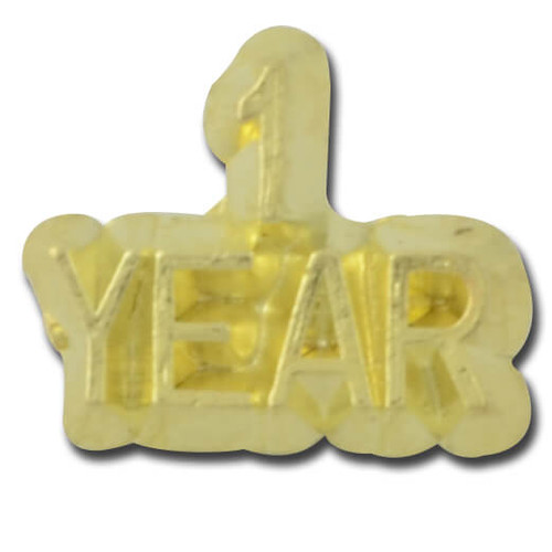 1 Year Lapel Pin
