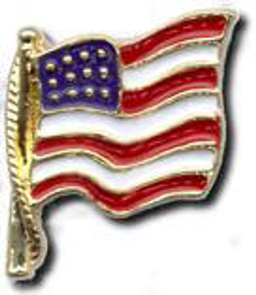 H21 Cast American Flag Pin