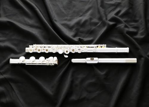 Di Zhao DZ-600 flute (DZ-600BOF)