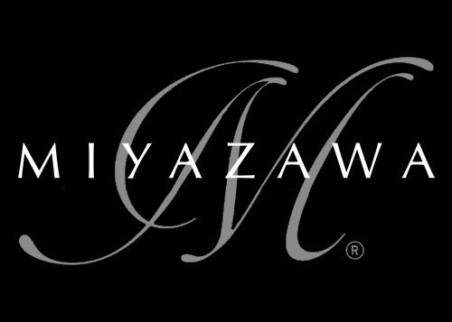 Miyazawa Vision professional flute (Miyazawa-Vision)