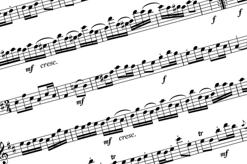 Flute Concerto in G major, K.313/285c for Flute and Piano - Mozart