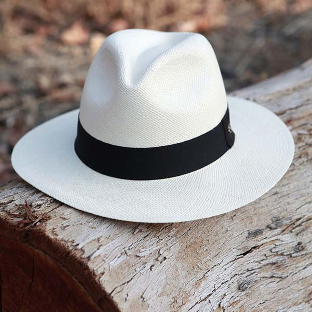 56f56f99 Austral Hats - White Panama Hat with Black Band