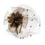 Something Special - Brown Ribbon and Lace Fascinator Hair Band Hat