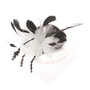 Something Special - Black and White Feather and Lace Fascinator
