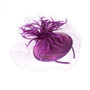 Something Special - Purple Feather Fascinator Hat with Lace Veil