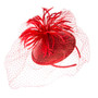 Something Special - Feather Fascinator Hat with Lace Veil