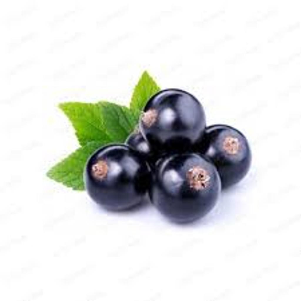 Natural Black Currant Flavoring 128 oz