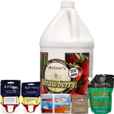 Strawberry Fruit Wine Kit