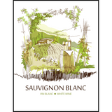 Sauvignon Blanc Wine Labels 30 ct