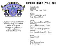 Real Fake Burning River Pale Ale Beer Kit