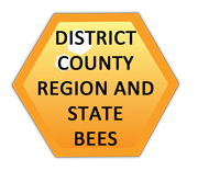 district county region and state spelling bees