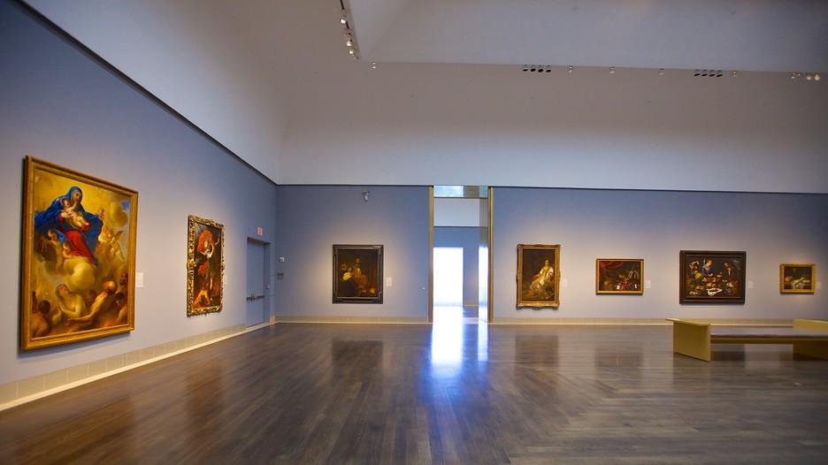 houston-museum-of-fine-arts.jpg
