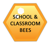 school and classroom spelling bee