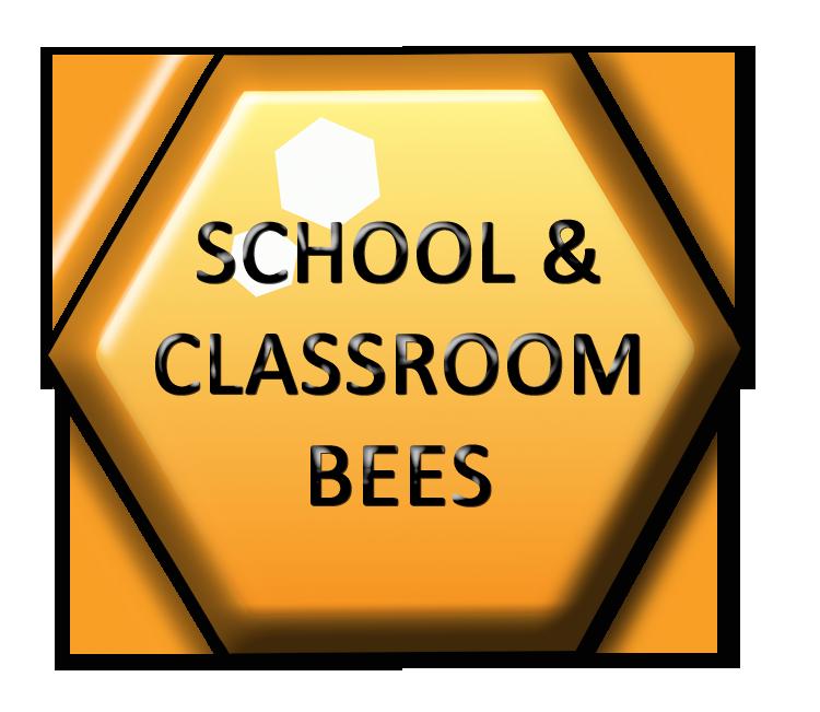 schoolclassroomspellingbee.png
