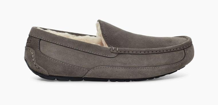 UGG Ascot Slipper Grey