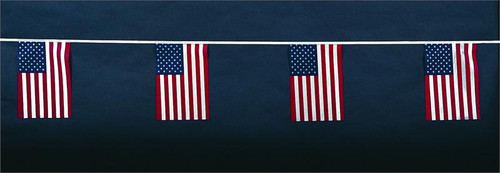 American String Pennants (cloth)
