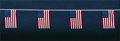 American String Pennants (polyethylene)