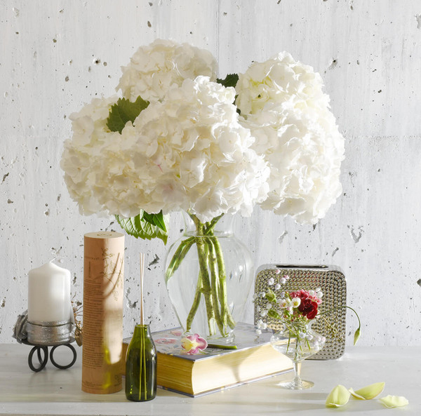 Hydrangea flower bouquet for delivery to Vancouver BC | Adele Rae