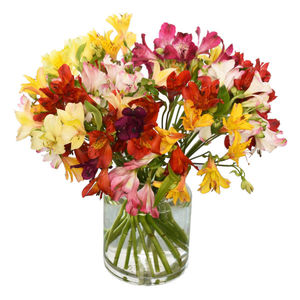 Get Well Flower Bouquets in Burnaby BC | Adele Rae Florist