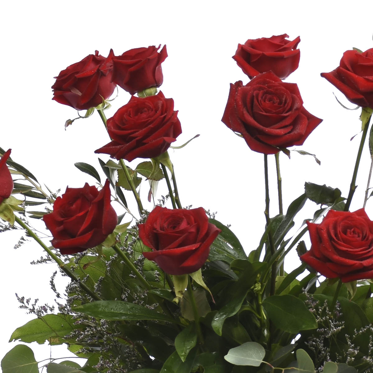 Metrotown Flowers for Same day delivery   Burnaby Florist Adele Rae