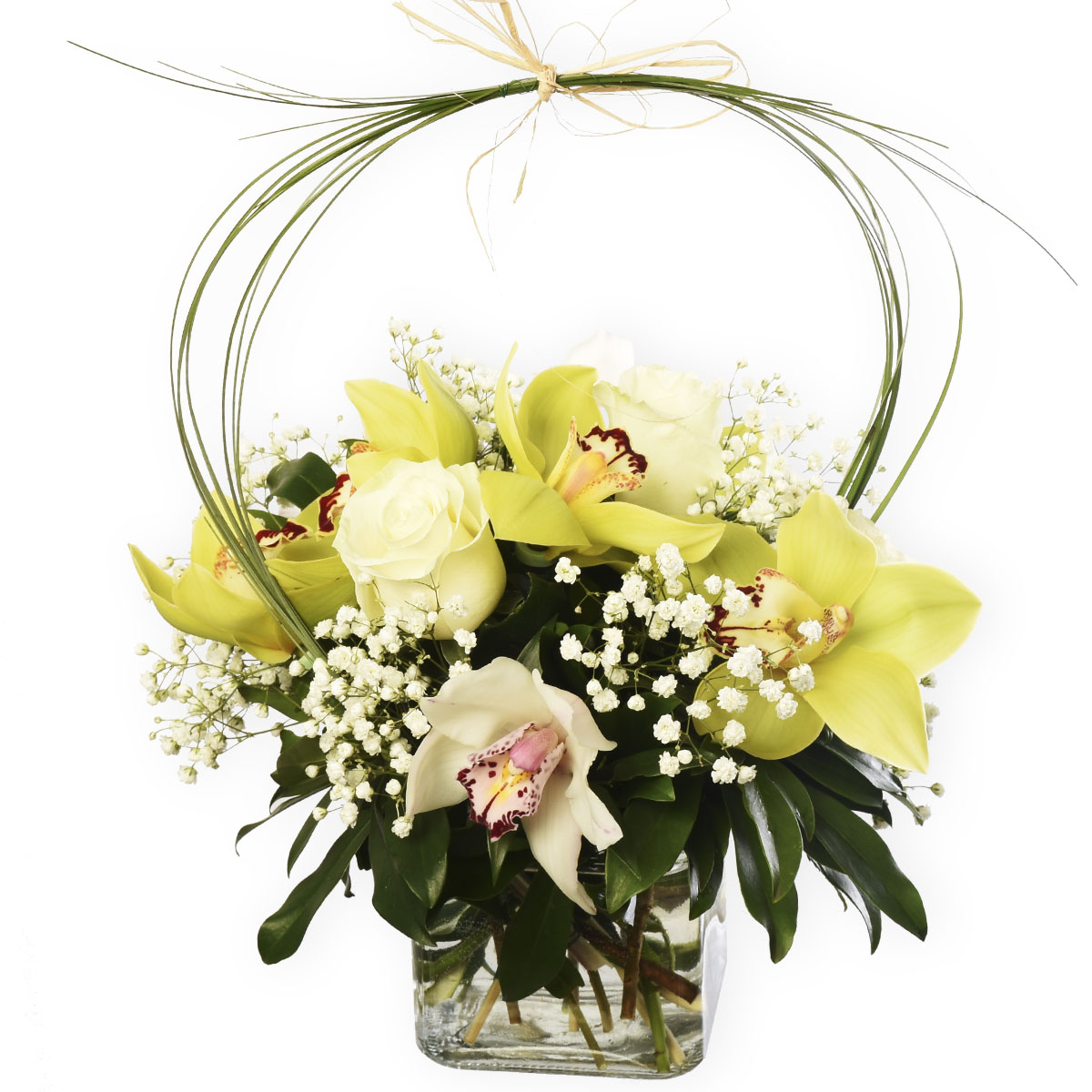 Cymbidium & rose floral arrangement in glass cube