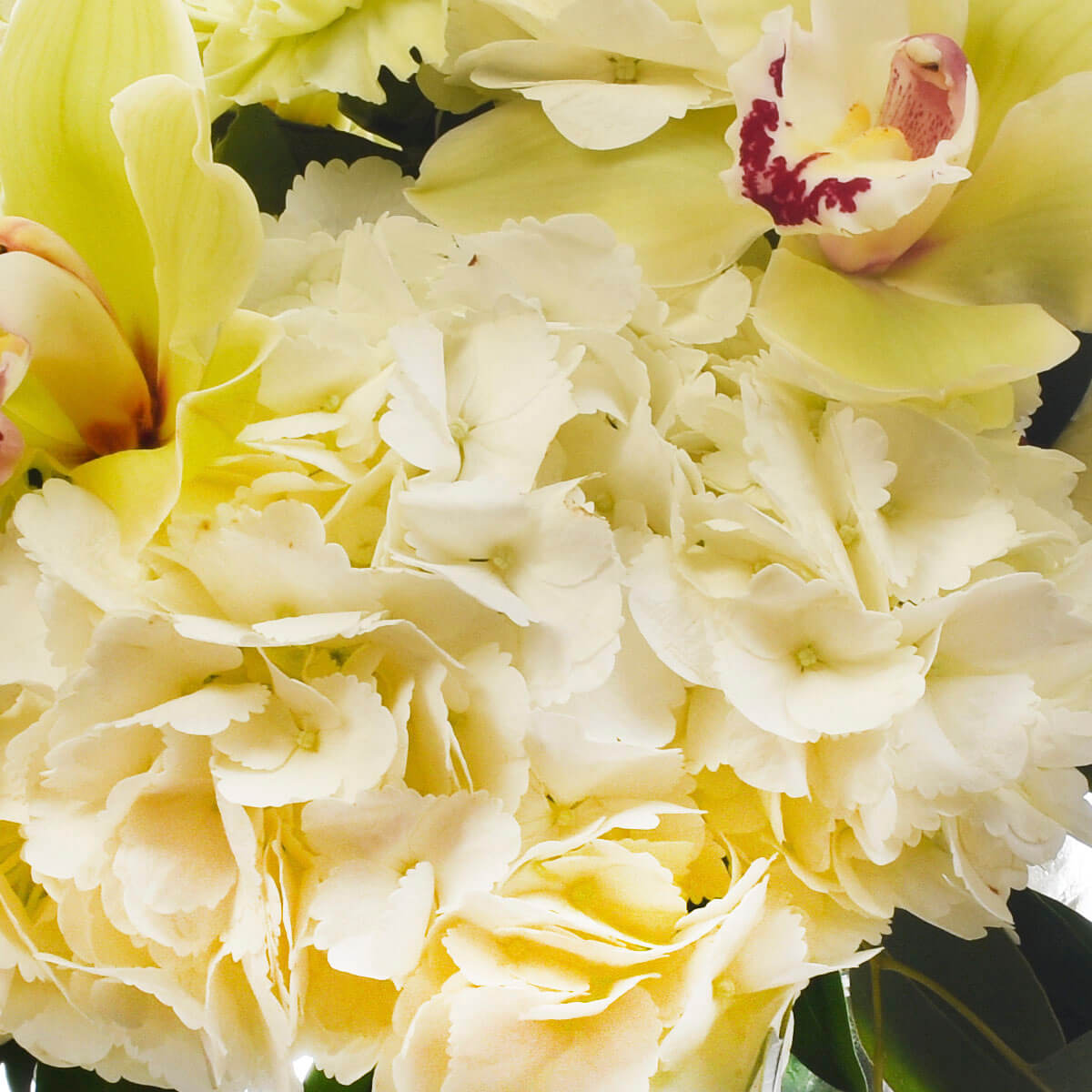 Burnaby Canada same day flower delivery - Adele Rae Florist