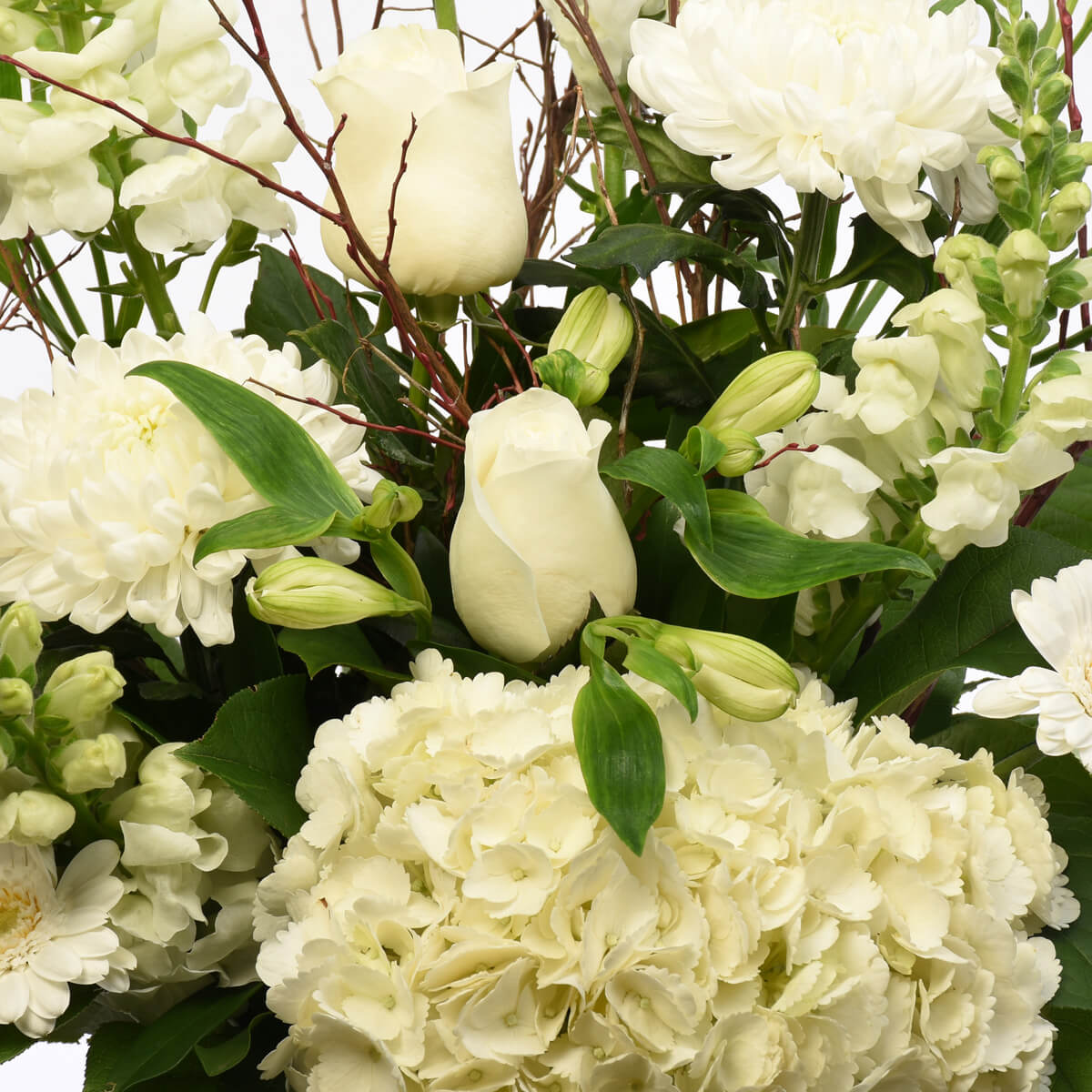 Clear glass vase with flowers like hydrangea, roses, snapdragons for sympathy