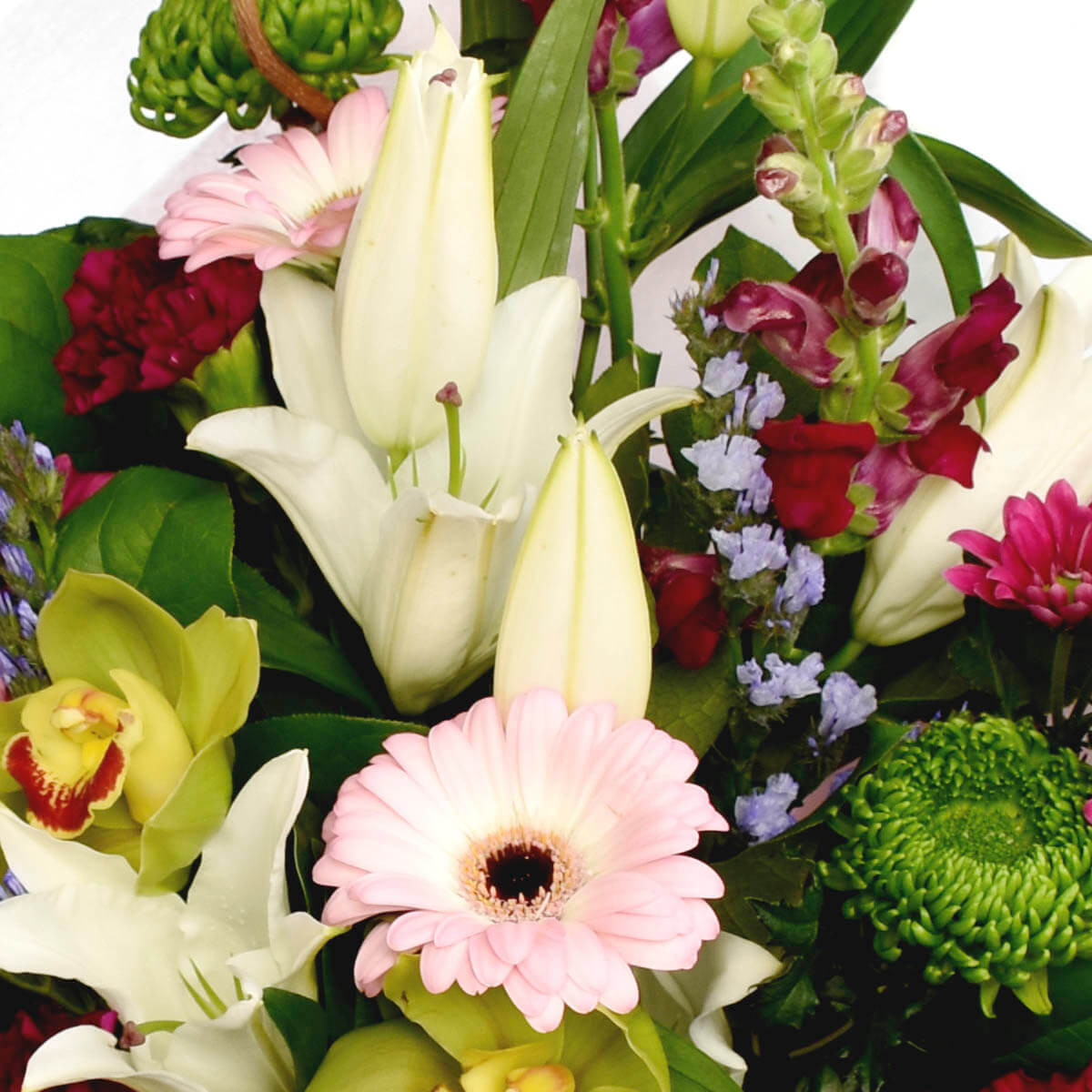 Birthday Flowers to be delivered to Vancouver BC | Adele Rae
