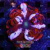 Dragon's Breath ultra rock flower anemone. A stunning saltwater anemone.