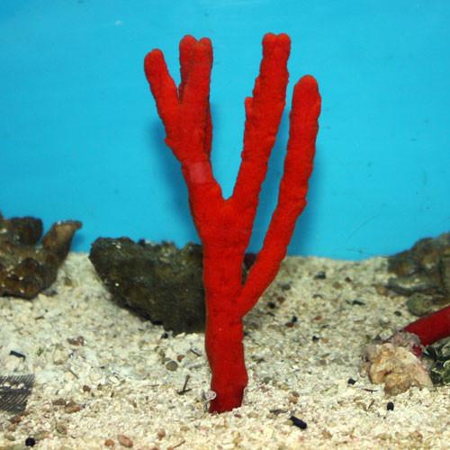 Red Tree Sponge XL