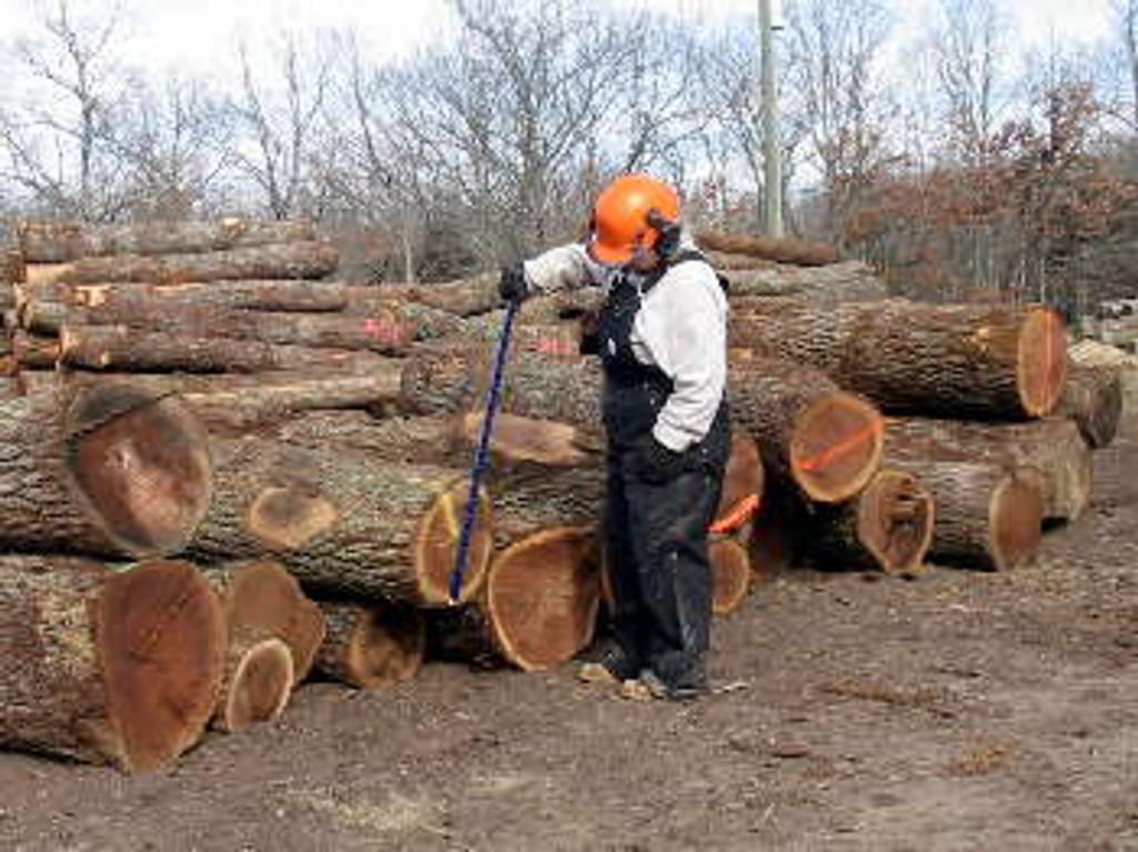"Logrite LSI36 36"" International Log Scale"