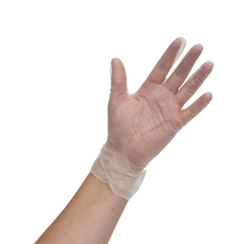 Vinyl Gloves Powder Free - 3 Mil, shown palm out