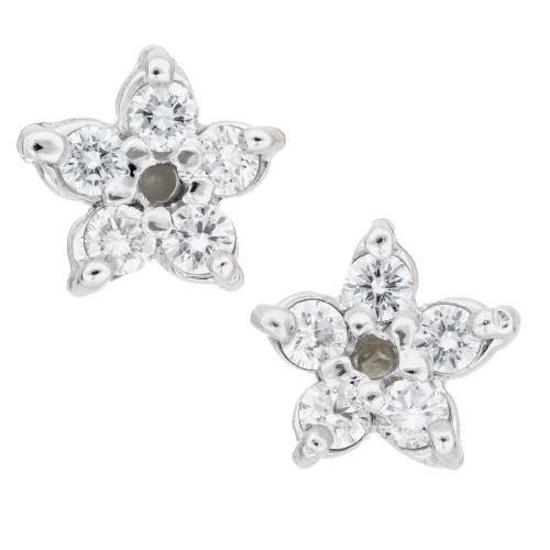Peter Suchy .20 Carat Platinum Star Earrings