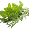 Rosemary Mint Balancing Tonic