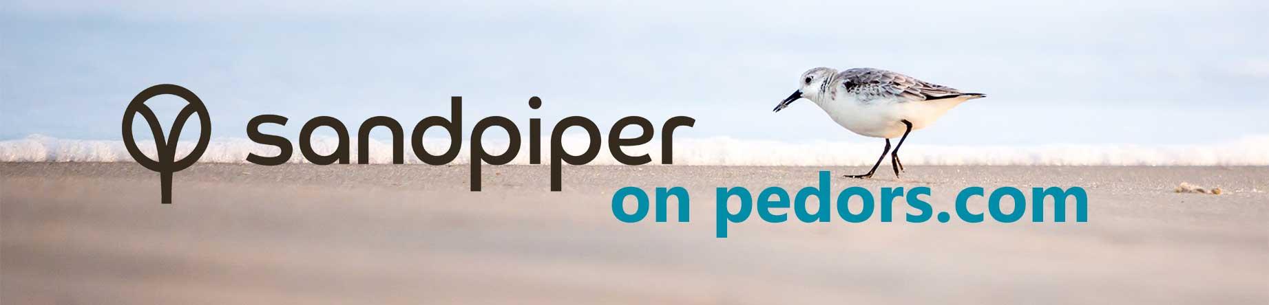 sandpiper-on-pedors.jpg