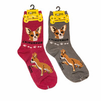 Chihuahua Dog Lovers Socks - Two Pairs