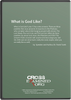 What is God Really Like?  A View from the Parables (DVD)