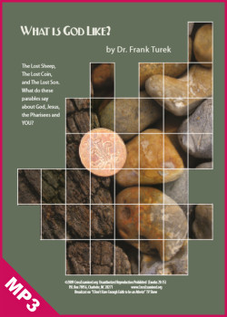 What is God Really Like? A View from the Parables (MP3)