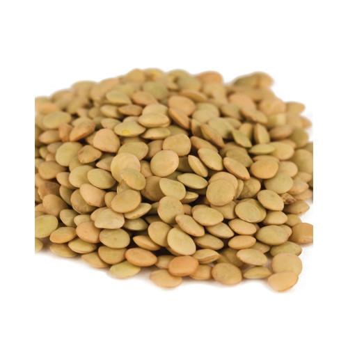 20lb Lentil Beans
