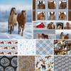 Horse Whisperer Full Collection