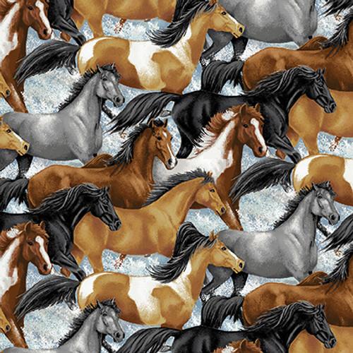 5677-39 Multi     Horse Whisperer
