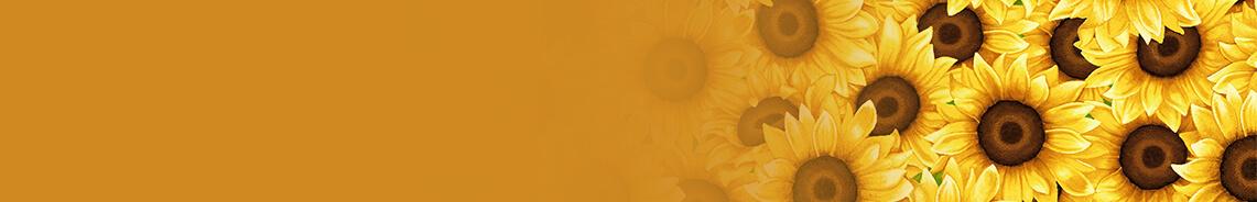 sunny-sunflowers-header.jpg