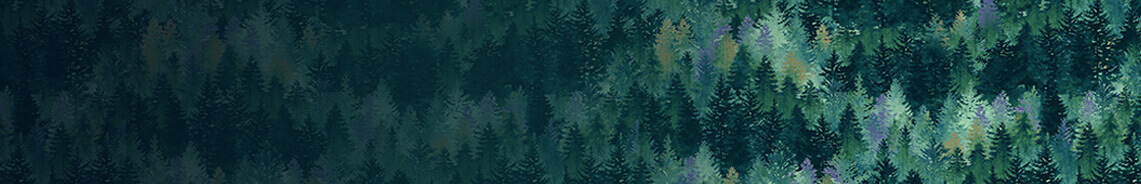 woodland-wonders-header.jpg
